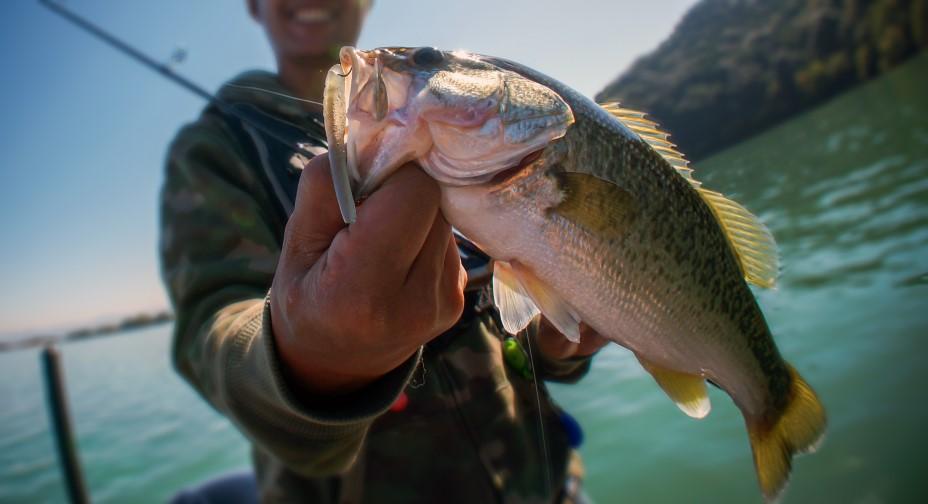 Pêche sur le lac de Monteynard